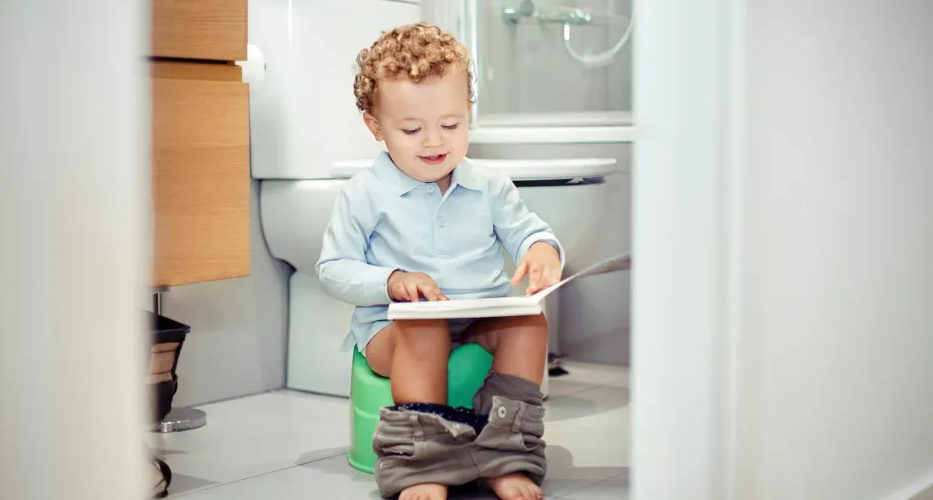THE BEST POTTY TRAINING CHAIRS OF 2019