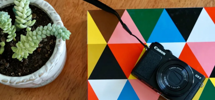 THE BEST BEGINNER CAMERAS OF 2019